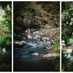 Santiago love: a picturesque garden wedding