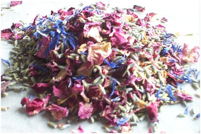cornflower confetti