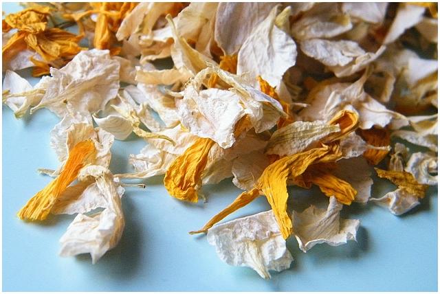 delphinium marigold sunflower