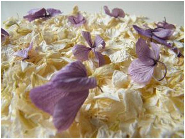 delphinium petals hydrangea