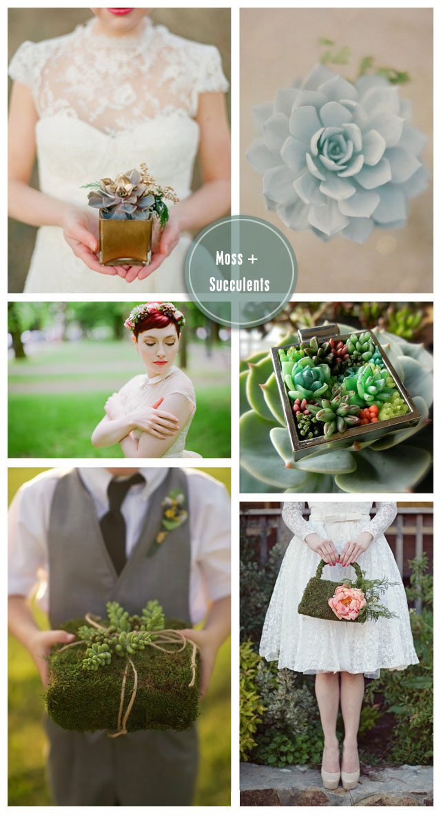 Moss + Succulent: Wedding Inspiration