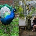 Peacock Blue & Green: Engagement | Love Shoot