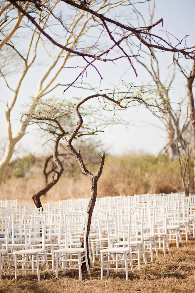 Swart Wedding FIONA CLAIR PHOTOGRAPHY-108