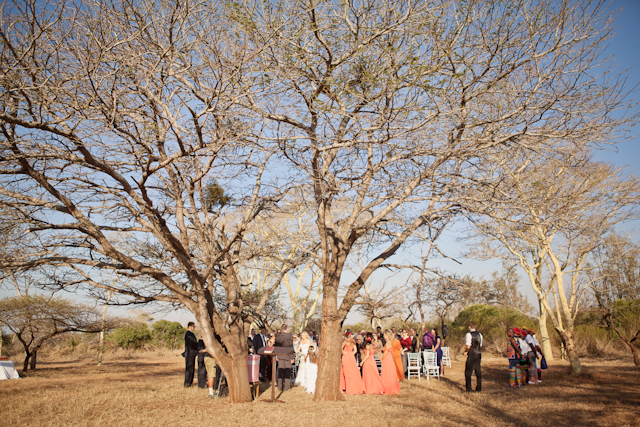 Swart Wedding FIONA CLAIR PHOTOGRAPHY-257