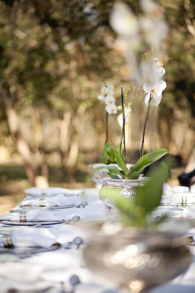 Swart Wedding FIONA CLAIR PHOTOGRAPHY-83