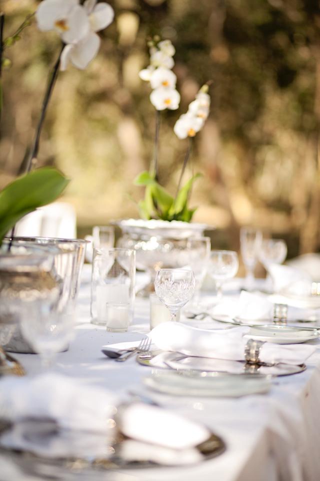 Swart Wedding FIONA CLAIR PHOTOGRAPHY-89