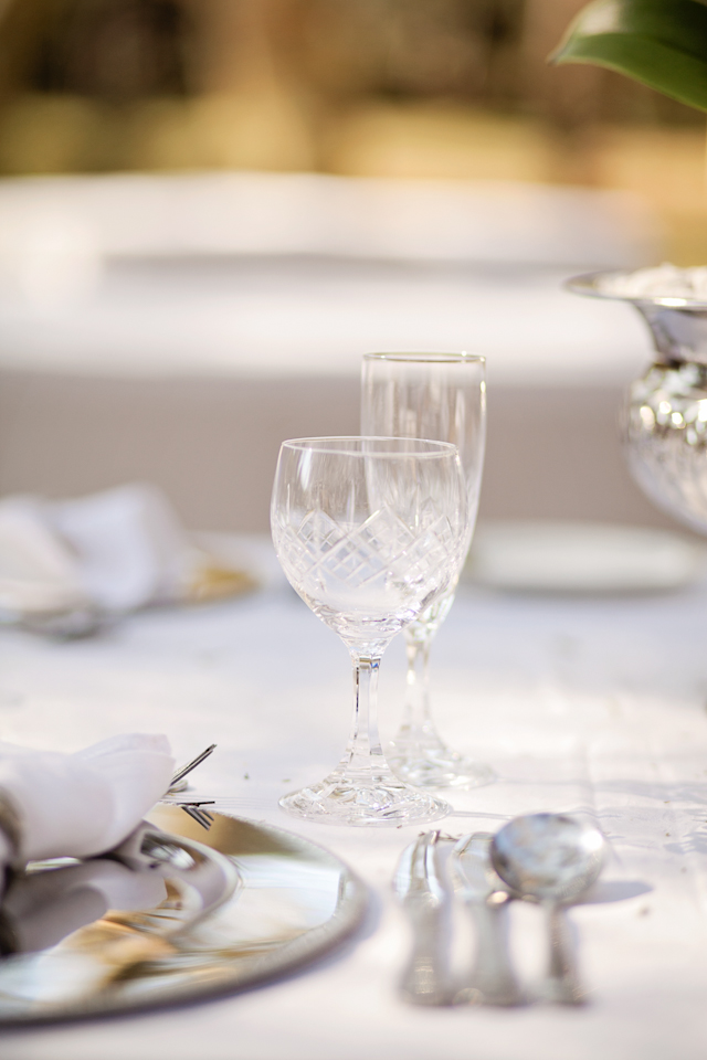 Swart Wedding FIONA CLAIR PHOTOGRAPHY-90