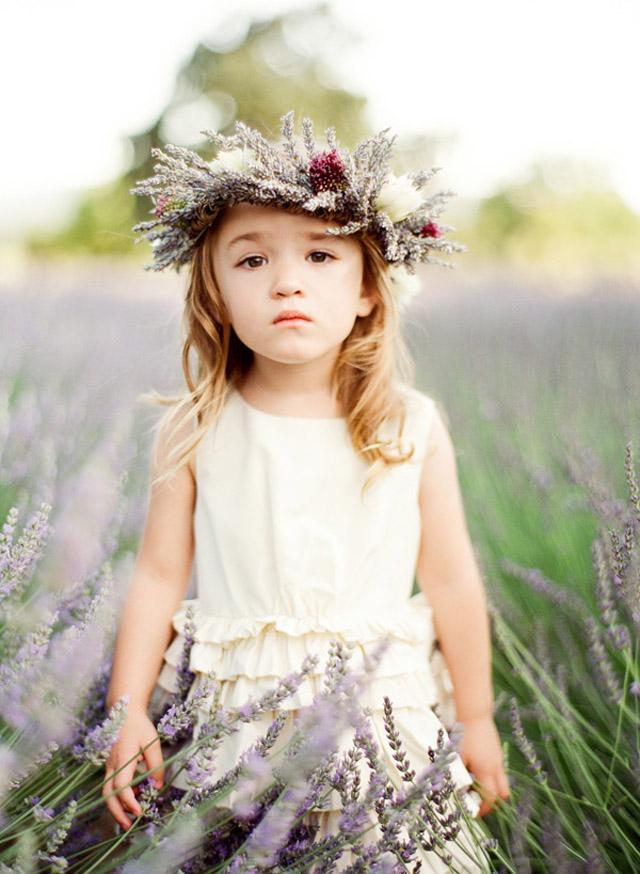 sonoma_lavender_ktmerry_123