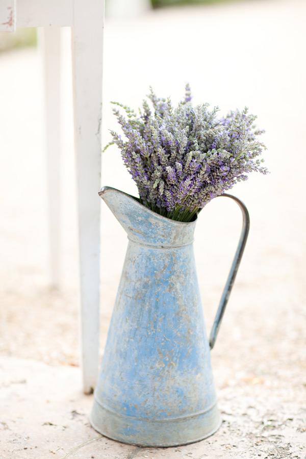 sonoma_lavender_ktmerry_67