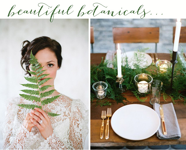 Beautiful Botanical | Wedding Inspiration & Ideas: Ferns
