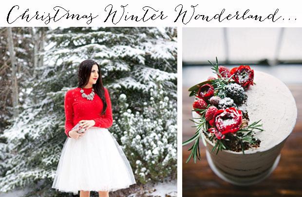 Christmas Winter Wonderland | Wedding Ideas