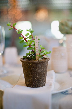 Eco­-friendly Wedding Tips |  Five ideas to make your wedding more green