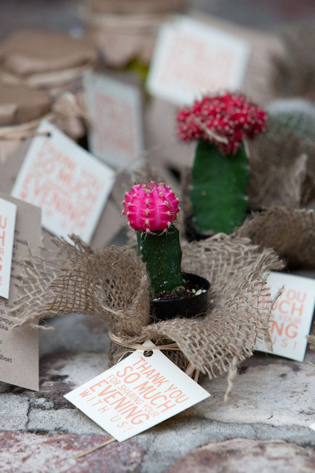 cactus wedding favour idea
