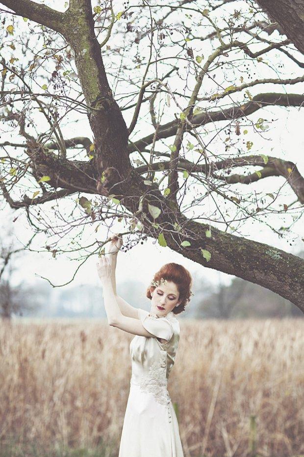 Wilderness Bride 2015 Wedding Dresses The Dearest Collection_0029