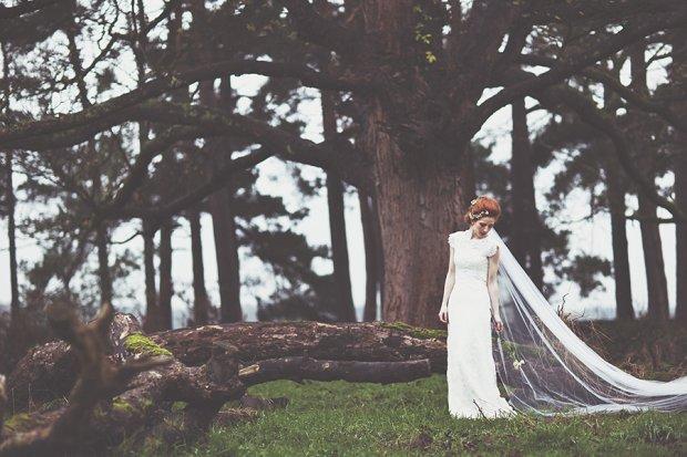Wilderness Bride 2015 Wedding Dresses The Dearest Collection_0032