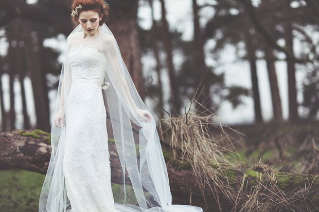 Wilderness Bride 2015 Wedding Dresses The Dearest Collection_0035