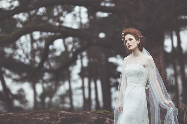 Wilderness Bride 2015 Wedding Dresses The Dearest Collection_0036