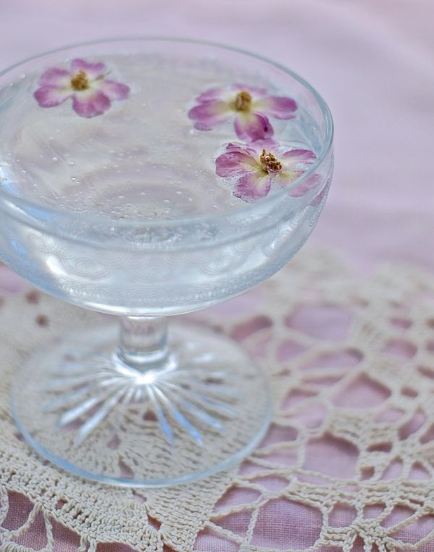 elderflower fizz spritzer