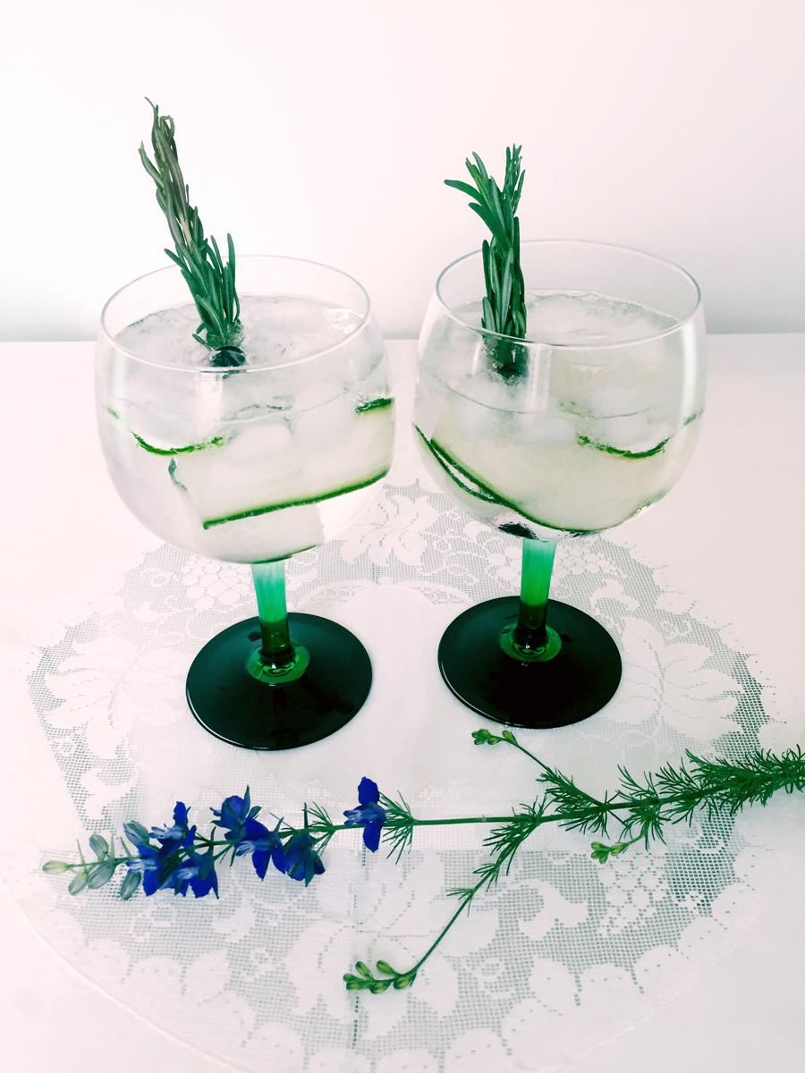 tanqueray gin gift set