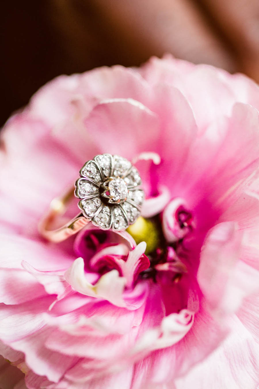 The New Wonderful: A Beautiful Botanical Styled Wedding Shoot