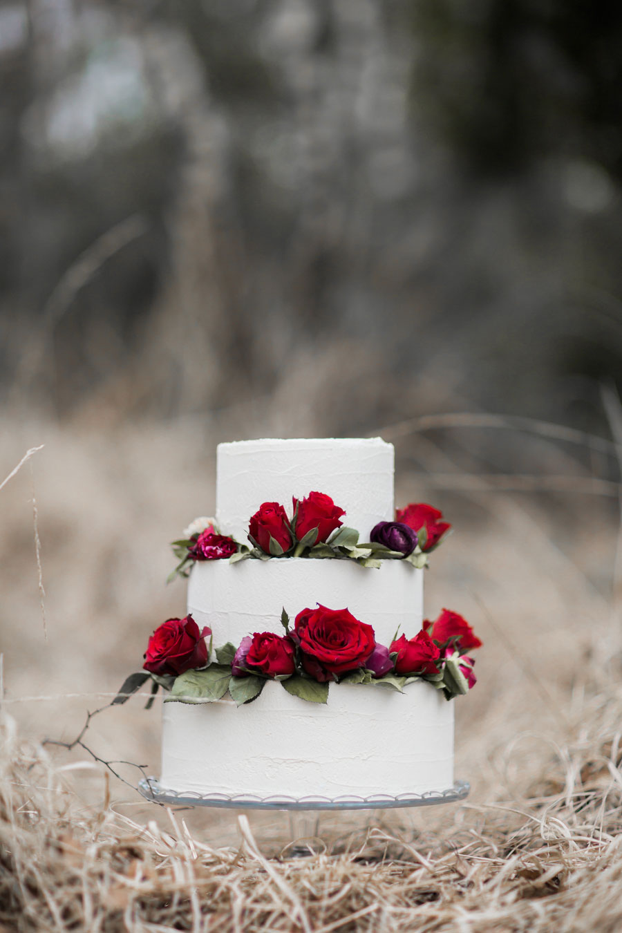 Opelia Inspired Bridal Shoot!0041