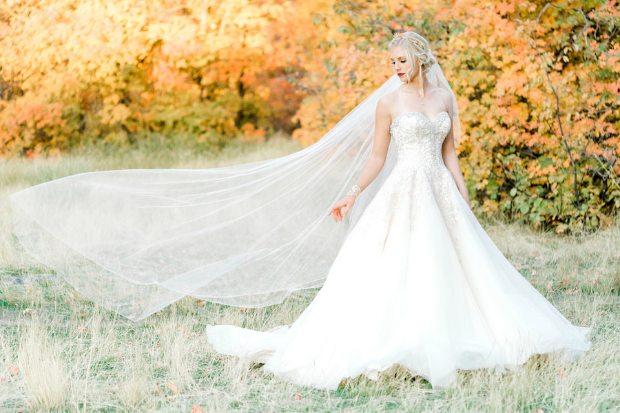 Vibrantly Rich Forest Editorial dress and veil