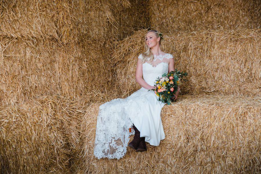 honey-horseshoe-helen-king-photography-203